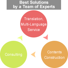 Best Solutions by a Team of Experts