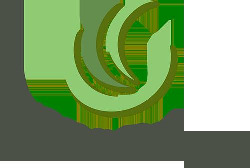 株式会社 Trans Bridge (中文名: 特朗信息)